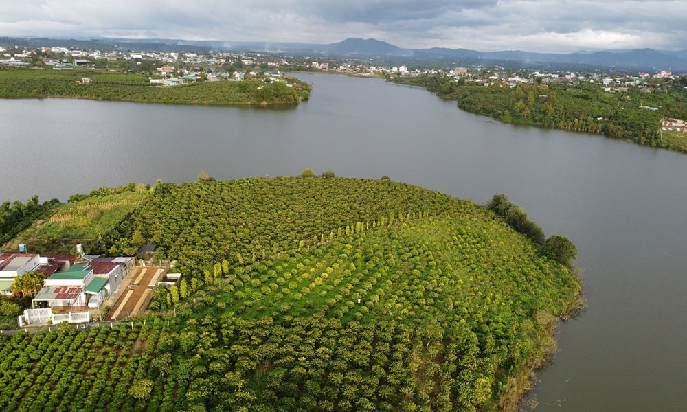 Kover Group chuyên mua bán đất tại Bảo Lộc